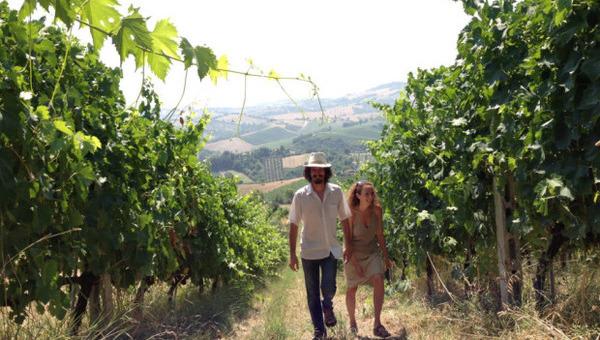 Resistenza naturale: c'è saggezza nel vino?