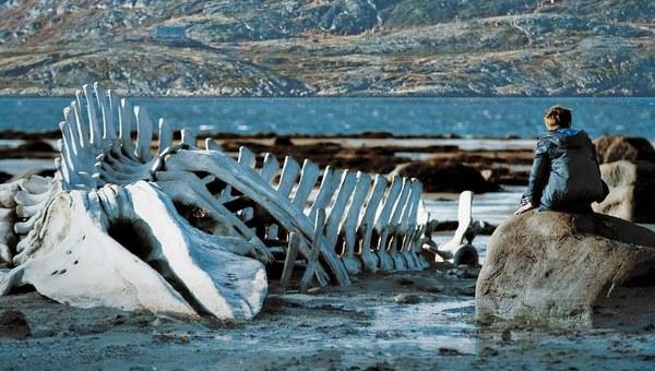 Leviathan, l'animale più pericoloso è l'uomo