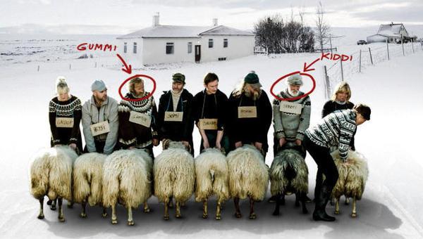 Rams – Storia di due fratelli e di otto pecore. Il cuore sotto al gelo