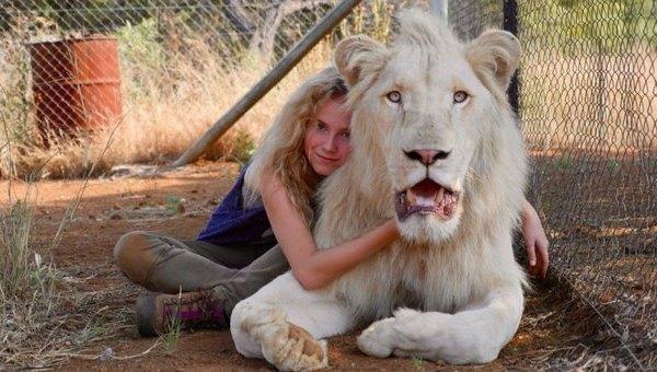 Mia e il Leone Bianco. Il ruggito del vero film per bambini