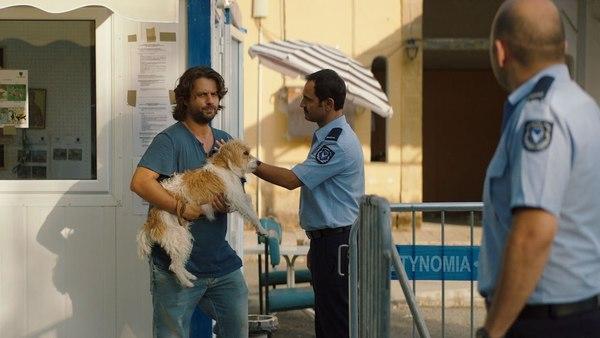 Da Cipro divisa in due la cino-odissea d'un cane di nome Jimi