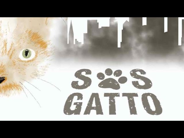 """S.O.S. Gatto"": una docu-fiction sui gatti e le ""gattare"" di Brooklyn"